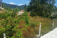 For Sale Land 1-1-0 rai in Phuket, South, Thailand