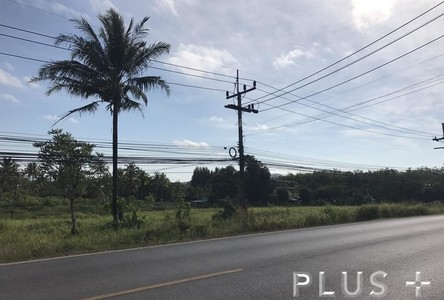 For Sale Land 29 rai in Phuket, South, Thailand