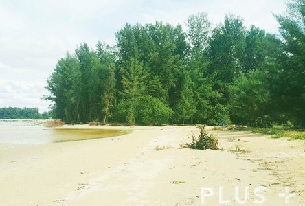 For Sale Land 19-2-62.5 rai in Phuket, South, Thailand