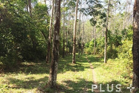 For Sale Land 40-0-67.2 rai in Phuket, South, Thailand