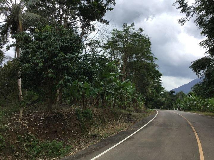 ขาย ที่ดิน 1-2-40 ไร่ มะขาม จันทบุรี | Ref. TH-ZCZVSJLL