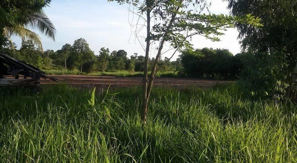 ขาย ที่ดิน 2 ไร่ ดอนตาล มุกดาหาร | Ref. TH-TXCJRMOC