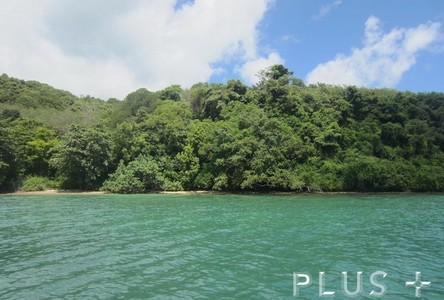 For Sale Land 36-2-66 rai in Phuket, South, Thailand
