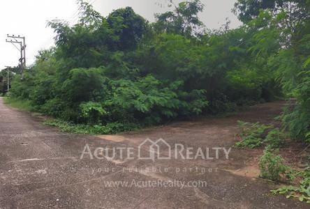 Продажа: Земельный участок в районе Doi Saket, Chiang Mai, Таиланд