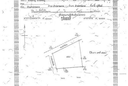 For Sale Land 5 rai in Lam Plai Mat, Buriram, Thailand