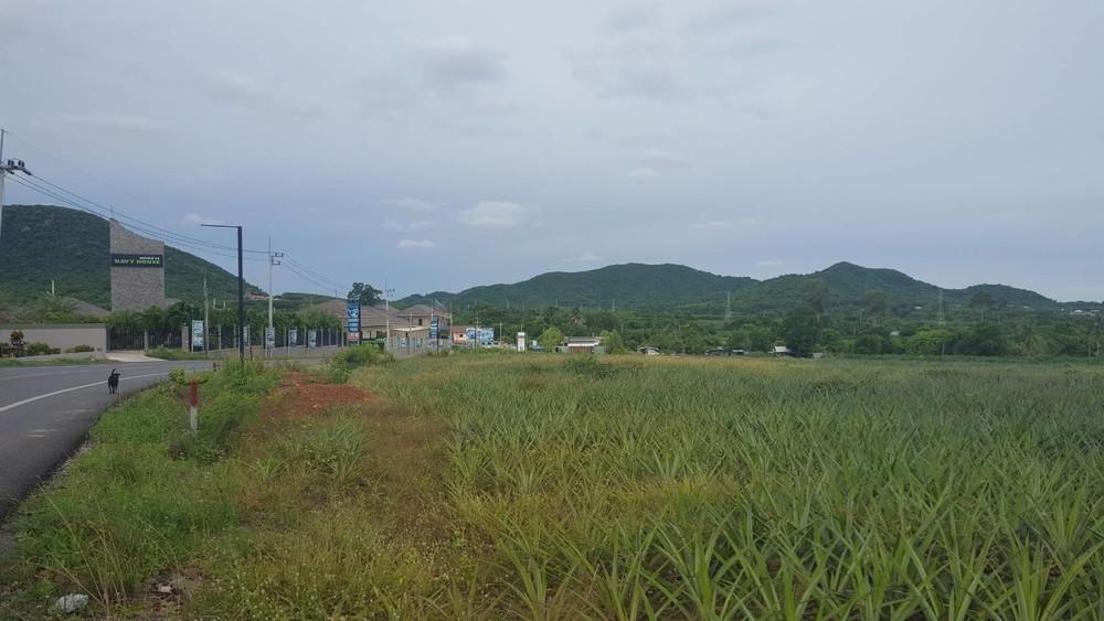 ขาย ที่ดิน 11 ไร่ สัตหีบ ชลบุรี   Ref. TH-OOXGABFI