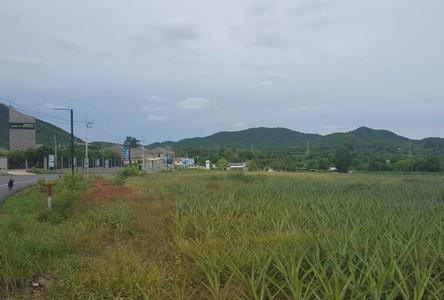 For Sale Land 11 rai in Sattahip, Chonburi, Thailand