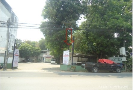 For Rent Land 1 rai in Mueang Chiang Mai, Chiang Mai, Thailand