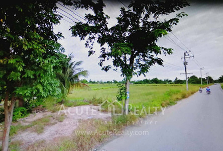 For Sale Land in Phan Thong, Chonburi, Thailand