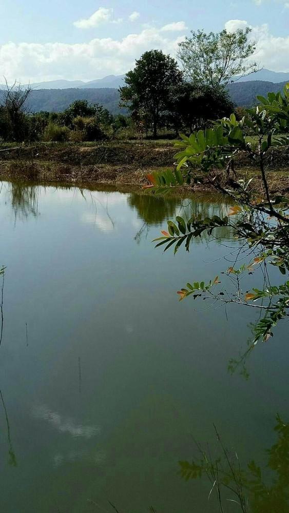For Sale Land 15-1-49 rai in Mae Taeng, Chiang Mai, Thailand | Ref. TH-WWMZCYCF
