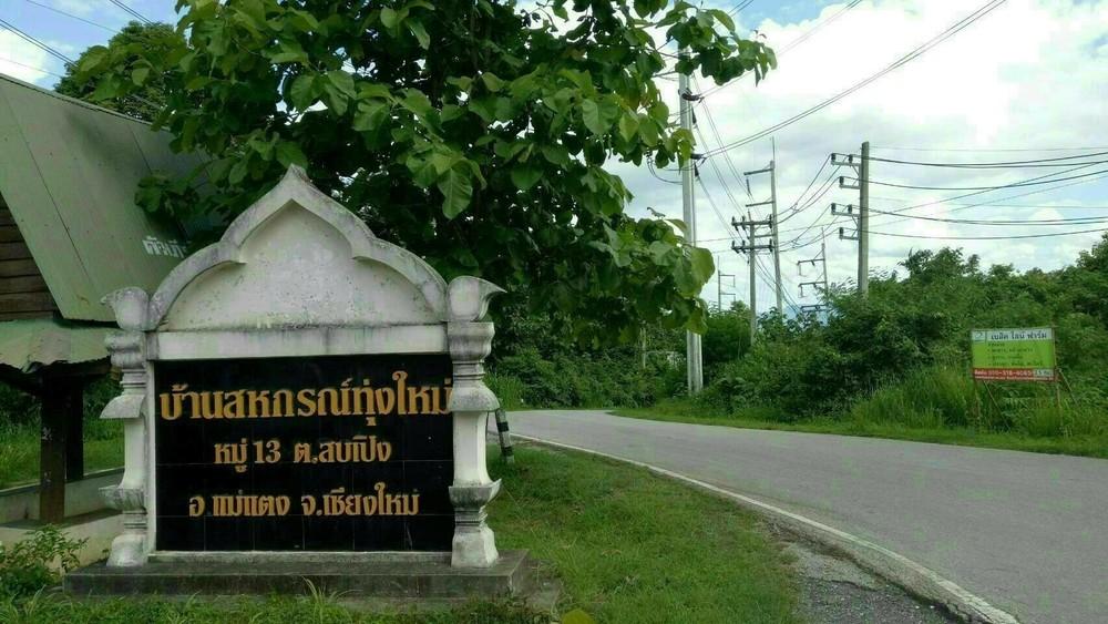 For Sale Land 1-3-96 rai in Mae Taeng, Chiang Mai, Thailand   Ref. TH-WBPOJSJU