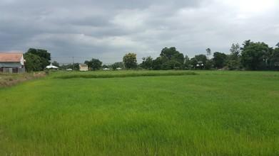 В том же районе - Ban Na, Nakhon Nayok