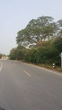 Located in the same area - Mueang Suphanburi, Suphan Buri