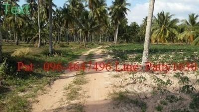 For Sale Land 6 rai in Bang Lamung, Chonburi, Thailand | Ref. TH-MTRJDHJP