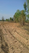 Located in the same area - Phayuha Khiri, Nakhon Sawan