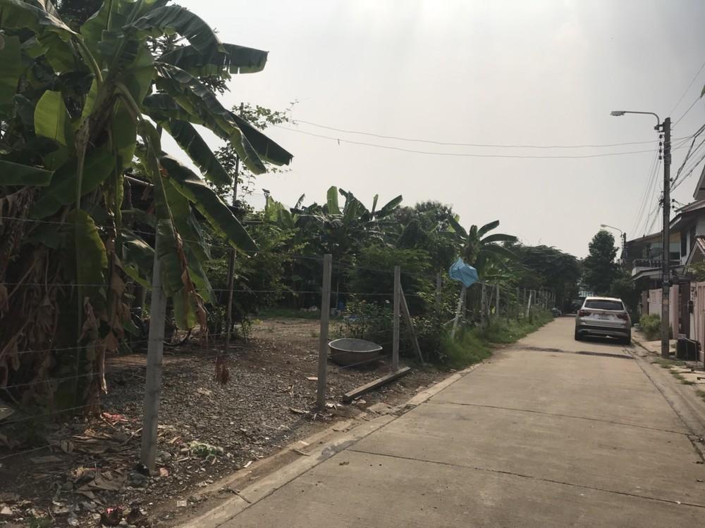 For Rent Land 1-1-25 rai in Mueang Nonthaburi, Nonthaburi, Thailand   Ref. TH-IKONYFEG