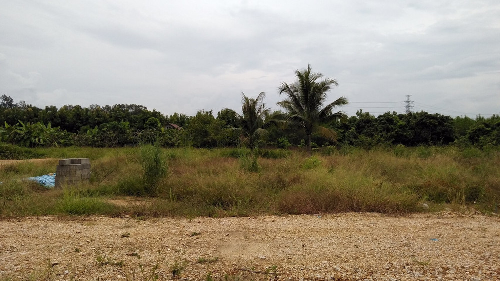 For Sale Land 100 sqwa in Saraphi, Chiang Mai, Thailand | Ref. TH-EJLBOJJX
