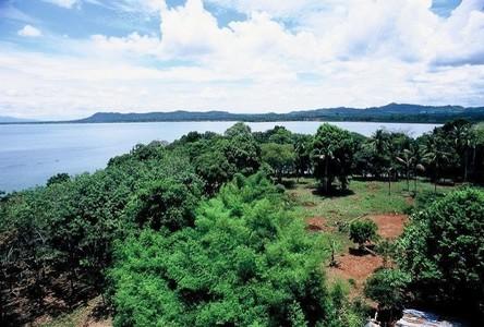 For Sale Land in Laem Ngop, Trat, Thailand