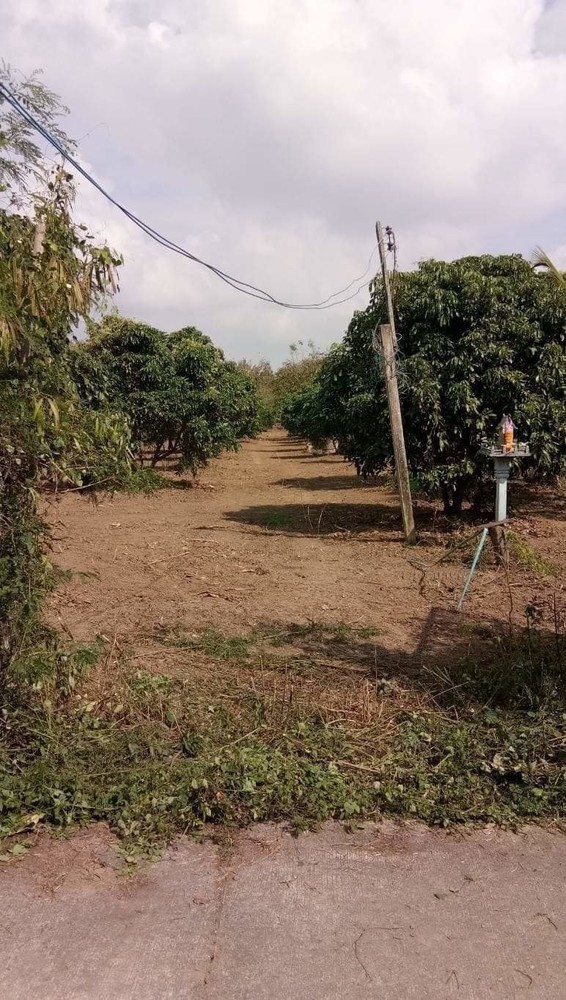 For Sale Land 2-1-31 rai in Saraphi, Chiang Mai, Thailand | Ref. TH-GIHSFIEV