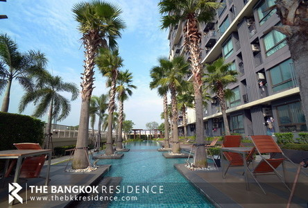For Sale or Rent Condo 26.19 sqm in Din Daeng, Bangkok, Thailand