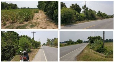 Located in the same area - Hankha, Chainat