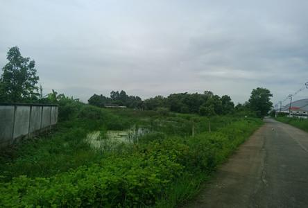 Продажа: Земельный участок 0-3-72 рай в районе Nong Chok, Bangkok, Таиланд