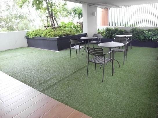 Tree Condo Sukhumvit 50 - В аренду: Кондо с 2 спальнями возле станции BTS On Nut, Bangkok, Таиланд | Ref. TH-UQRMXQBB