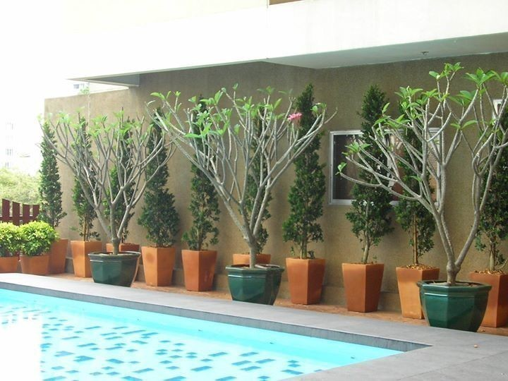 Prasanmit Condominium - For Rent 1 Bed Condo Near MRT Sukhumvit, Bangkok, Thailand | Ref. TH-FEADNCEL