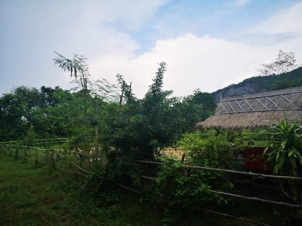 For Sale Land 6.29 rai in Sattahip, Chonburi, Thailand | Ref. TH-AQKXKUTG