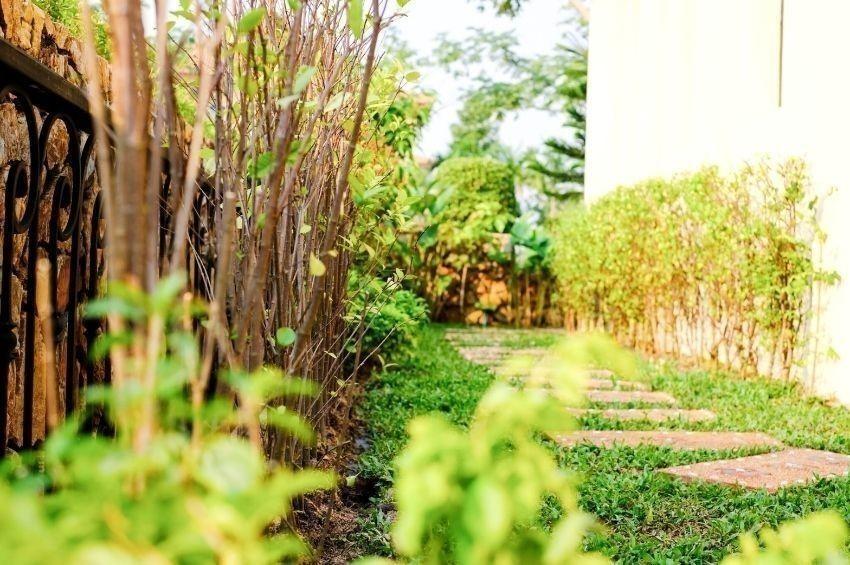 ขาย บ้านเดี่ยว 3 ห้องนอน สัตหีบ ชลบุรี   Ref. TH-YGLPTHRF