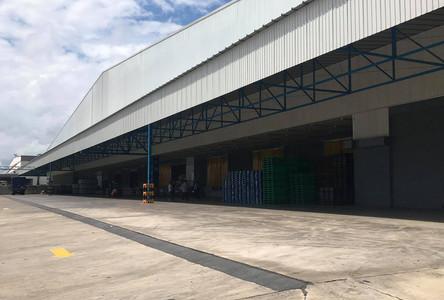 For Rent Warehouse 10,000 sqm in Bang Na, Bangkok, Thailand