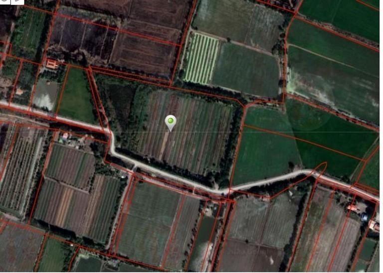 ขาย ที่ดิน 33-3-4 ไร่ บางปลาม้า สุพรรณบุรี | Ref. TH-FRDAXXLL