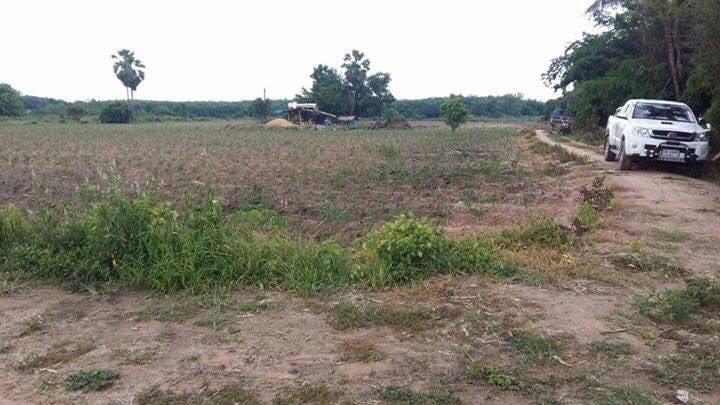 For Sale Land 6-1-0 rai in Wang Thong, Phitsanulok, Thailand | Ref. TH-ELEFTNLQ