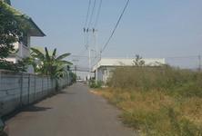 ให้เช่า ที่ดิน 1-2-0 ไร่ ไทรน้อย นนทบุรี