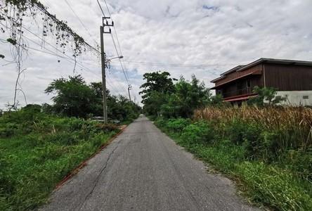 Продажа: Земельный участок 97 кв.ва. в районе Nong Chok, Bangkok, Таиланд