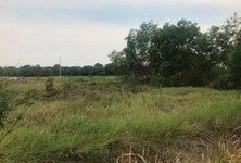 For Sale Land 400 sqwa in Nong Suea, Pathum Thani, Thailand