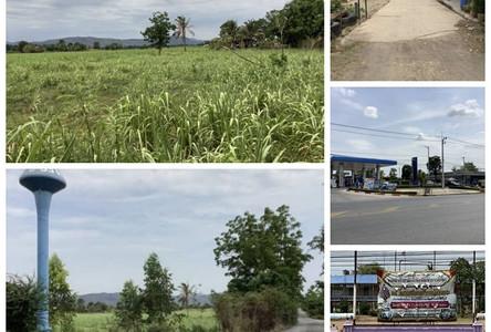 For Sale Land 2-3-85 rai in Chai Badan, Lopburi, Thailand