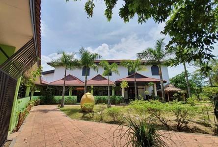 For Sale Business 1,000 sqm in Bang Lamung, Chonburi, Thailand