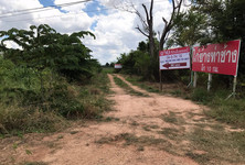 For Sale Land 14-3-74 rai in Chok Chai, Nakhon Ratchasima, Thailand