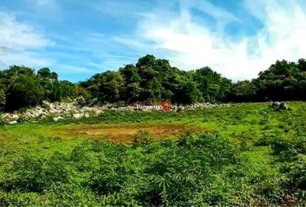 For Sale Land 76,800 sqm in Muak Lek, Saraburi, Thailand