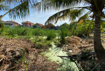 Продажа: Земельный участок 50 кв.ва. в районе Nong Chok, Bangkok, Таиланд