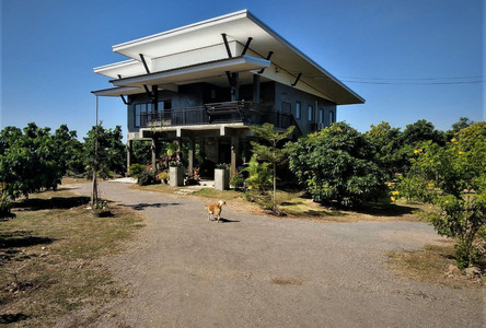 For Sale 3 Beds House in Ban Hong, Lamphun, Thailand