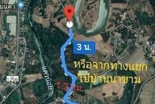 For Sale Land 21-1-7 rai in Wat Bot, Phitsanulok, Thailand