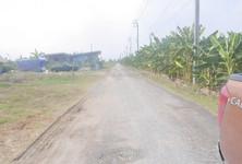 Продажа: Земельный участок 100 кв.ва. в районе Nong Chok, Bangkok, Таиланд
