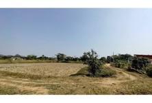 For Sale Land 1,304 sqm in Mueang Chiang Rai, Chiang Rai, Thailand