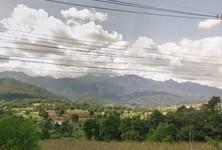 For Sale Land in Pai, Mae Hong Son, Thailand