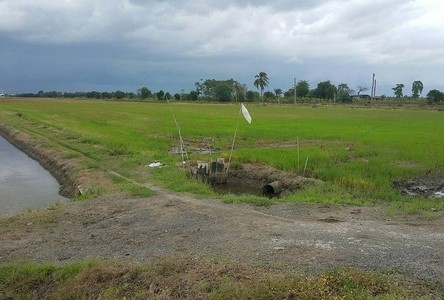 For Sale Land in Lat Lum Kaeo, Pathum Thani, Thailand