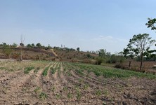 For Sale Land in Wiang Chiang Rung, Chiang Rai, Thailand
