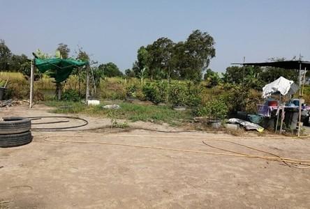 Продажа: Земельный участок 398 кв.ва. в районе Nong Chok, Bangkok, Таиланд