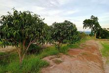 ขาย ที่ดิน 14 ไร่ สระโบสถ์ ลพบุรี